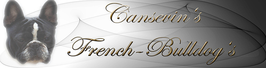 emotionheader-cansevin